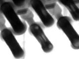 Backplane X-ray Analysis